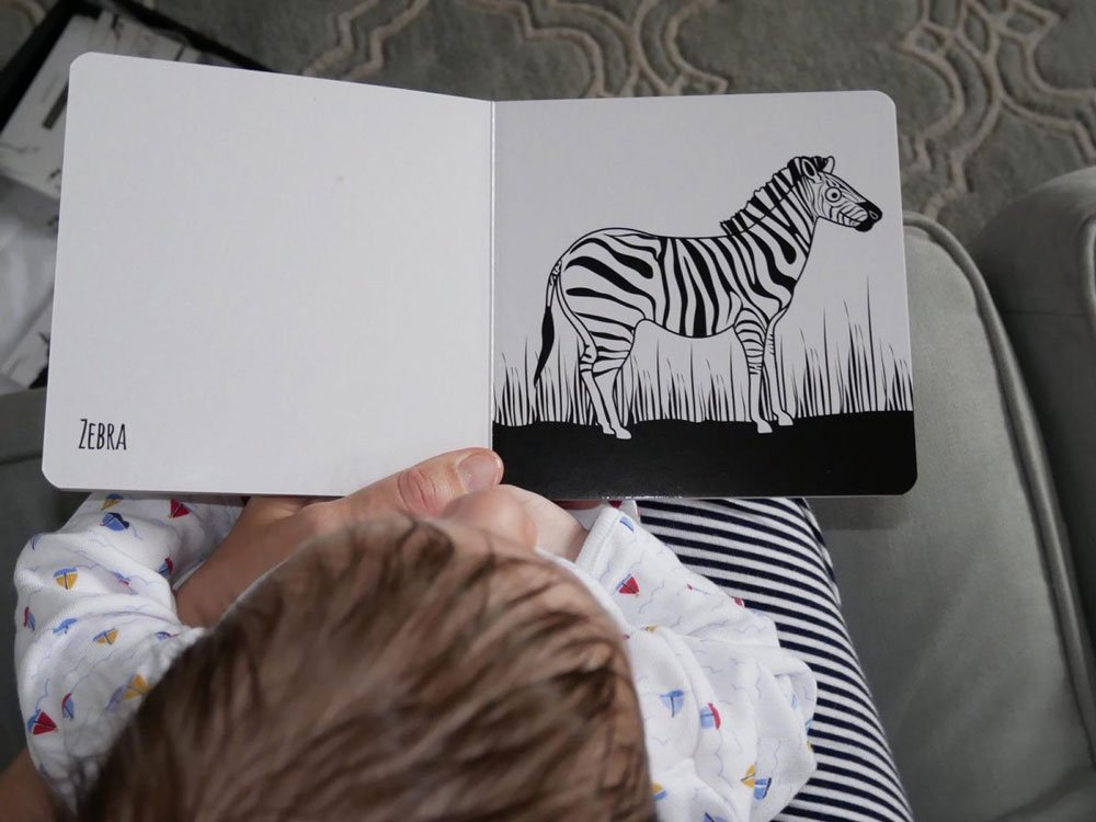The Little Black & White Book Project review